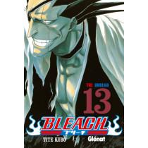 BLEACH 13 (GLE) - SEMINUEVO