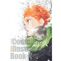 HAIKYU!! COMPLETE ILLUSTRATION BOOK (JAP)