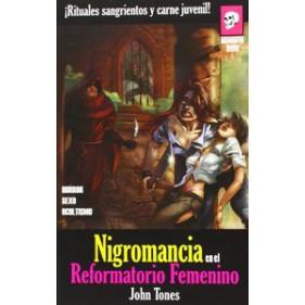 NIGROMANCIA EN EL REFORMATORIO (NOVELA) (SEMINUEVO)