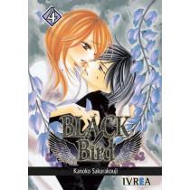 BLACK BIRD 04